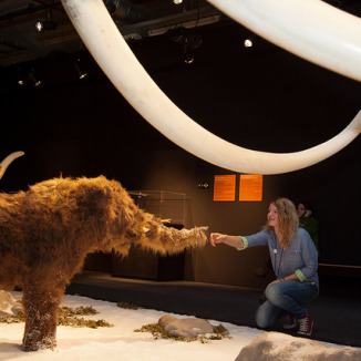 Giants of the Ice Age – in Amsterdam