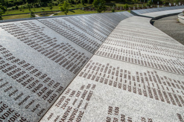 'How could you do this, Karadzic?' asks Srebrenica mother