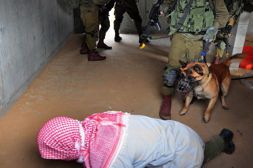 Israeli Army Exercise; Urban Warfare - A file photo of an Israeli soldier with dog