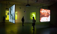 Close-Up: A New Generation of Film and Video Artists in the Netherlands