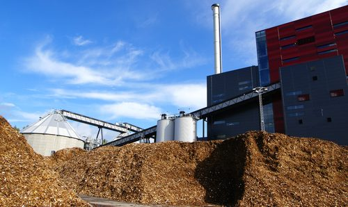 MPs want a stop to billion euro biomass power station subsidies