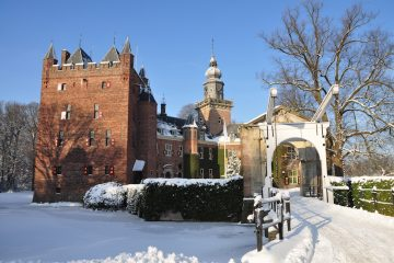Future leaders look no further: Nyenrode launches business admin BSc