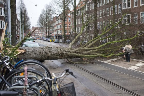 Powerful Storm Wreaks Havoc Across Western Europe