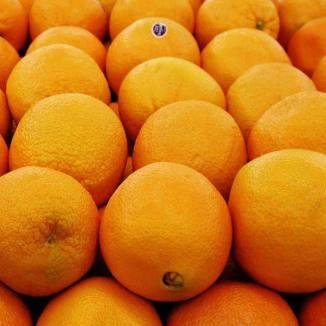 24 Oranges