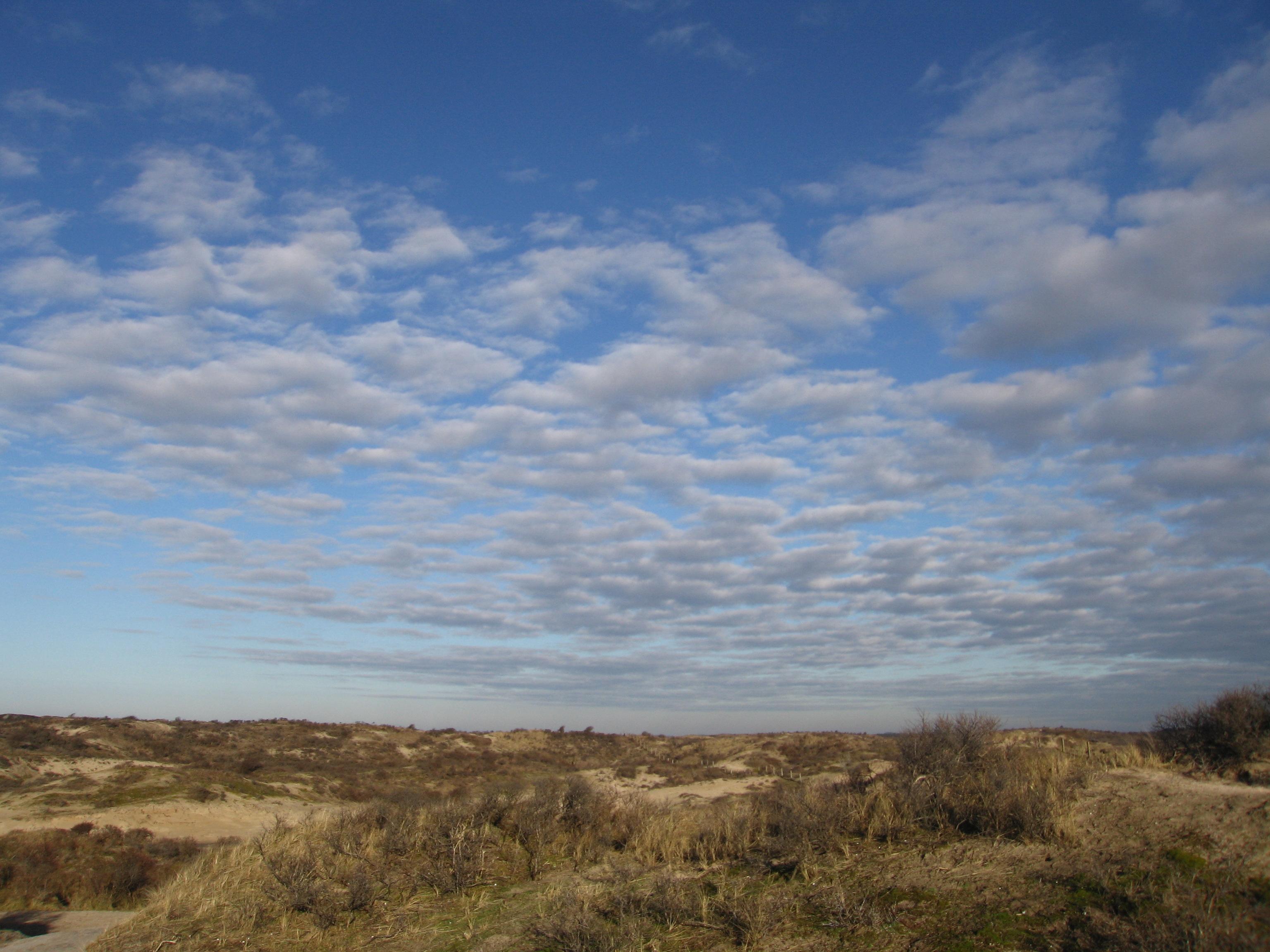dunes with big sky