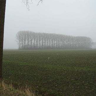 Gedogen, polderen, osseworst? 10 Dutch things to get your head around