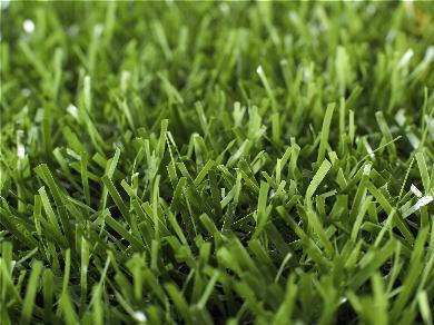 artificial turf ten cate