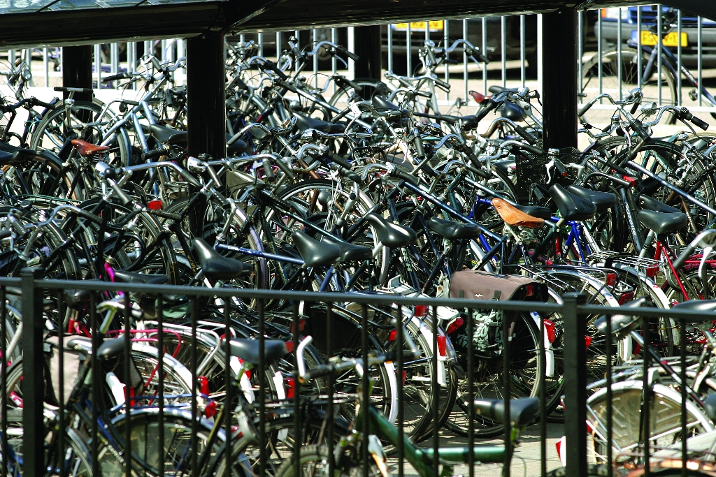 Dutch bikes 'victims of their own success' as congestion puts off cyclists