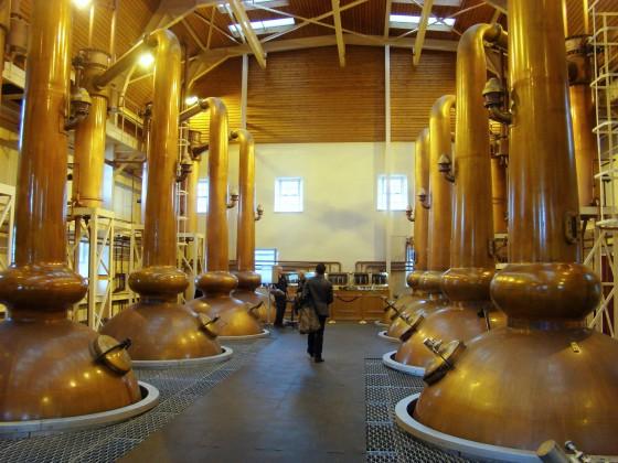 distillery glenmorangie