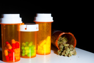 Medical marijuana – high time the Dutch got their message straight