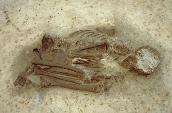 trijntje-oldest-grave