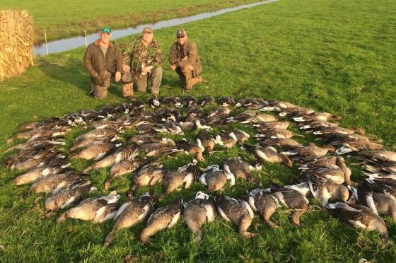 netherlands-goose-hunt_8125-copy-2