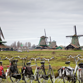 Splitting the difference: Why the new Dutch government isn't as boring as it seems