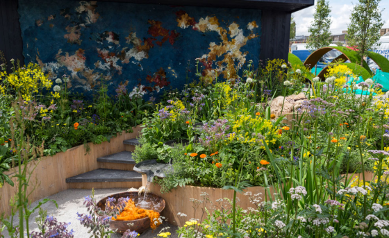 The Dutch garden features dye plants. Photo: RHS