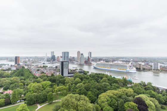 The Harmony of the Seas arrives in Rotterdam. Photo: Marc van der Stelt - MS Fotografie