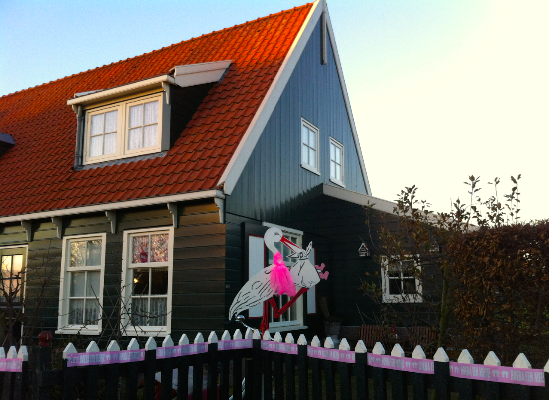 baby girl stork Dutch house