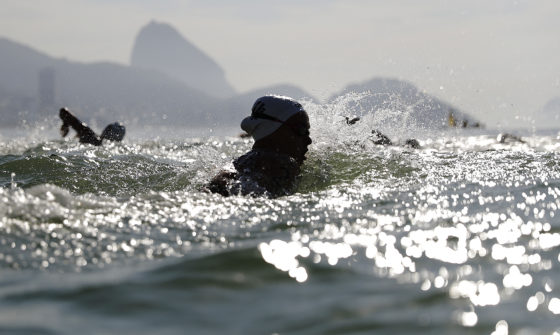 Sharon van Rouwendaal in action. Photo: AP Photo/David Goldman