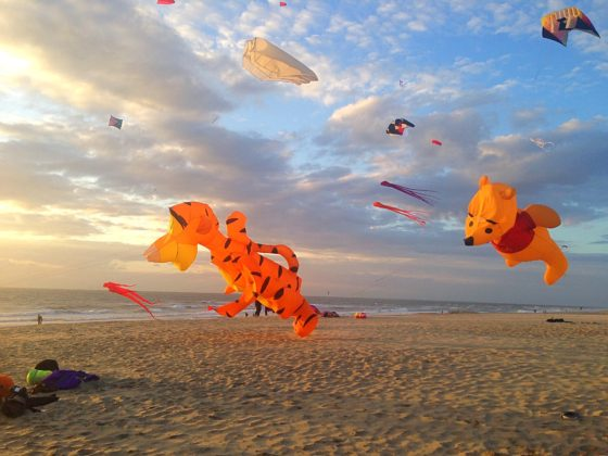 Kite flying on a sunny day on Texel. Photo: Sandra Koot