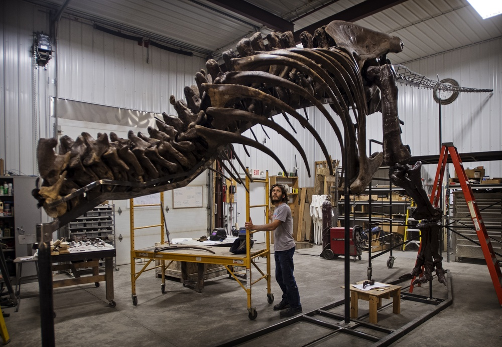 trix the t rex makes her mark on leiden in new exhibition