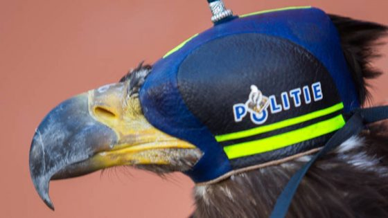 An eagle wearing a police hood