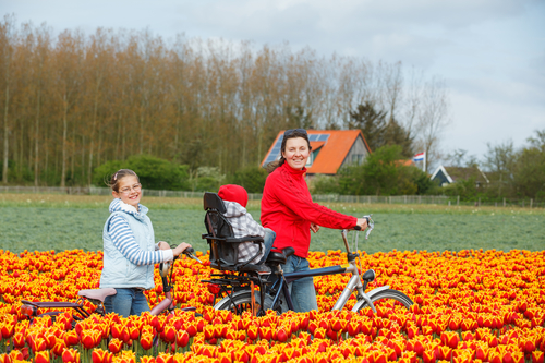 It's World Happiness Day and nine in 10 Dutch adults say they are
