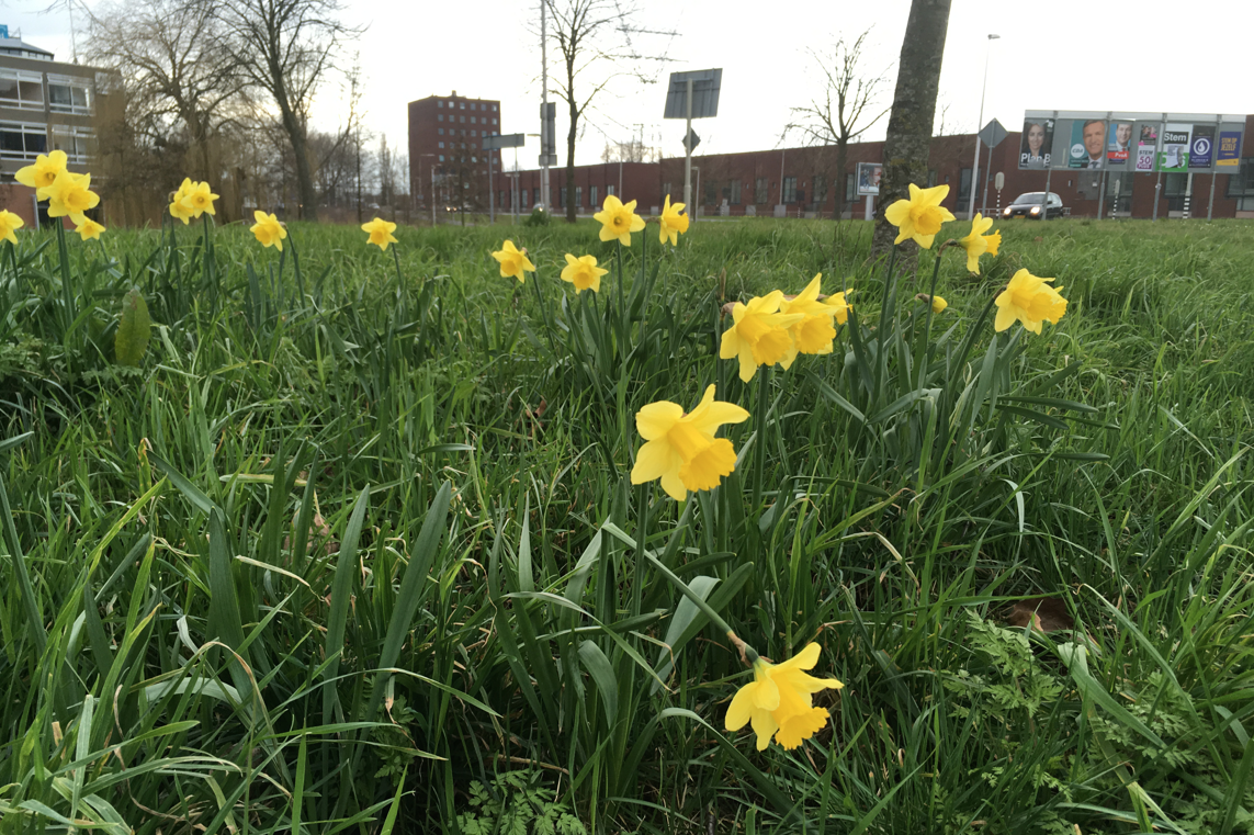 Цветотип Весна: палитра оттенков, стиль, гардероб и ткани для весенних  типажей | 761x1143