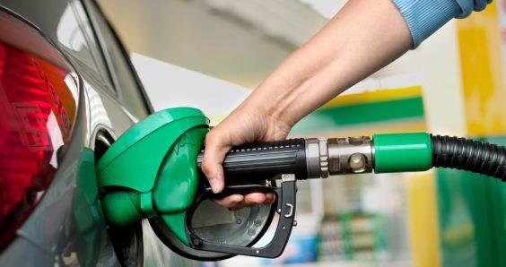 Dutch scientists call crop-based biofuels a 'false solution'