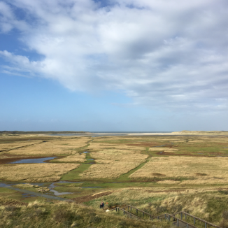 DutchNews.nl destinations: getting windblown in winter on Texel