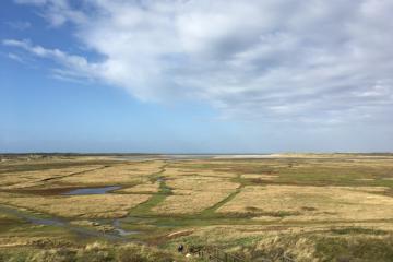 DutchNews.nl destinations: getting windblown in winter on Texel