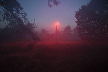 DutchNews podcast – The Bad Red Bat Bulb Edition – Week 8