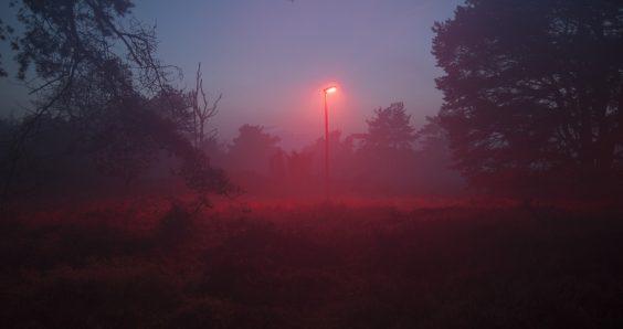 Barneveld residents see red over new bat-friendly street lighting