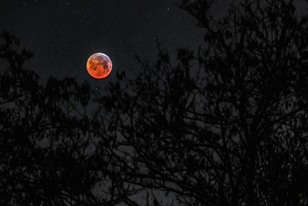 red moon netherlands - photo #5