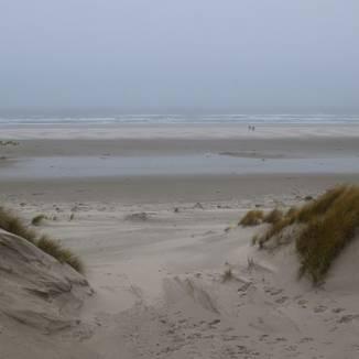 Dutch destinations: The Wadden Sea island of Terschelling