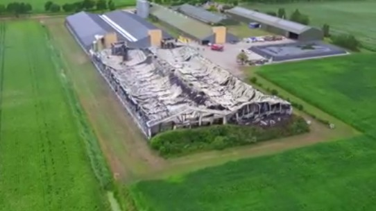 Fire which killed 100,000 chickens may have been started deliberately - DutchNews.nl - Live