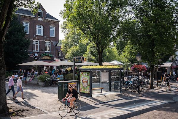 Pollen, not pollution: Utrecht's new bus stops are buzzing - DutchNews.nl