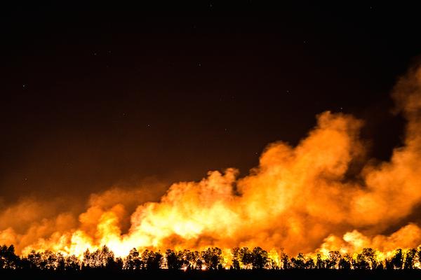 Feuer In Heide