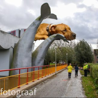 Podcast photomontage of Trouby sitting on top of the train that crashed through barriers and landed on a whale sculpture in Spijkenisse