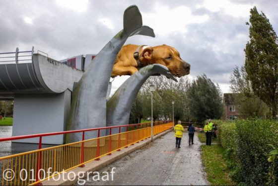 Photomontage of Trouby, a brown bull terrier, sitting on top of the train that crashed through barriers and landed on a whale sculpture in Spijkenisse